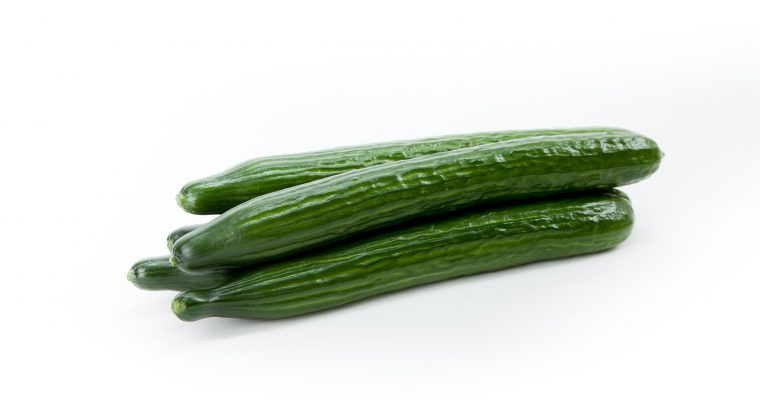 European Cucumbers